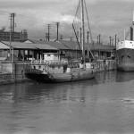 Goélette dans le Port de Montréal